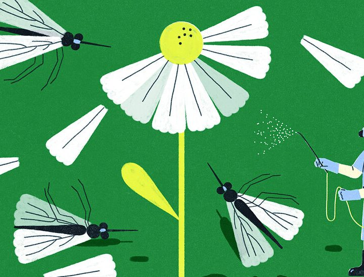 Should a Study on Pesticides Affect Our Use of Them? – The New York Times